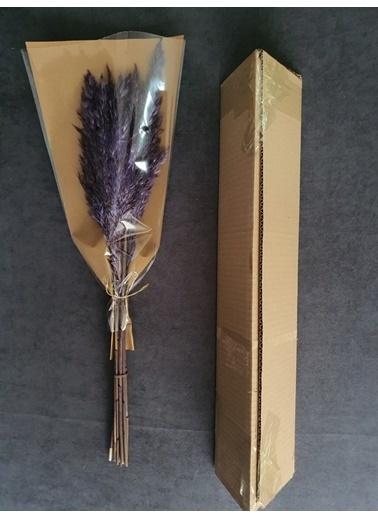 Kuru Çiçek Deposu Kuru Çiçek Şoklanmış 10'Lu Pampas Otu Karışık 60 Cm Mor